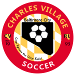 Charles Village Rec League | CVSC Youth Soccer Baltimore City