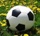 spring_soccer_large